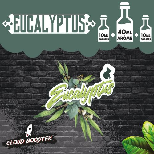 Eucalyptus 40 ml - Cloud Booster