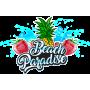 Beach Paradise 60 ml - Bang à l'ô