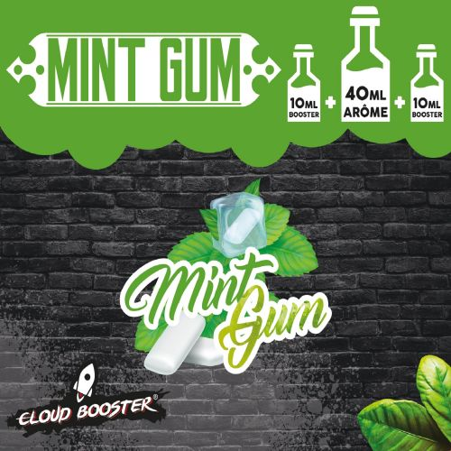 Mint Gum 40 ml - Cloud Booster