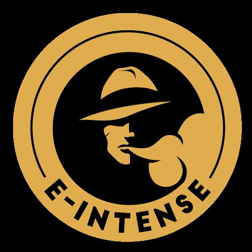E-INTENSE-Logo-500x500px-RVB.png